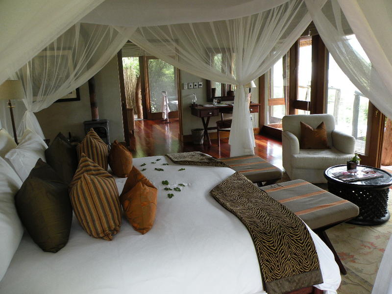 Travel the Garden Route and Safari South Africa
