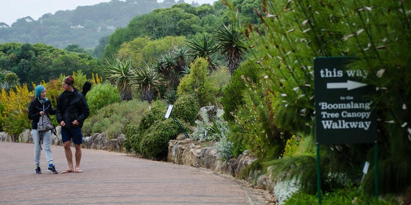 tours and accommodation in cape town