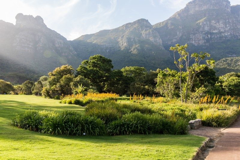 Malaria free safaris in south africa