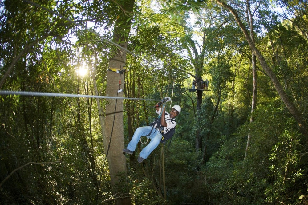 Treetop Canopy Trail