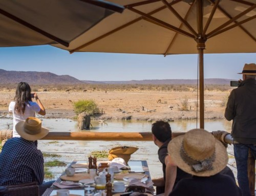 Madikwe Game Reserve and Cape Town Package