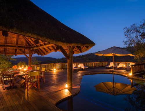 Pay 3 Stay 4 – Tshwene Lodge