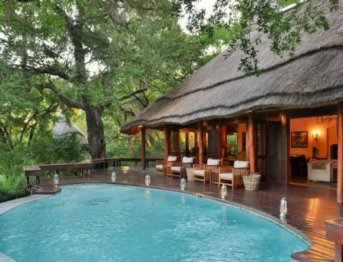 Imbali Safari Lodge – Kruger National Park