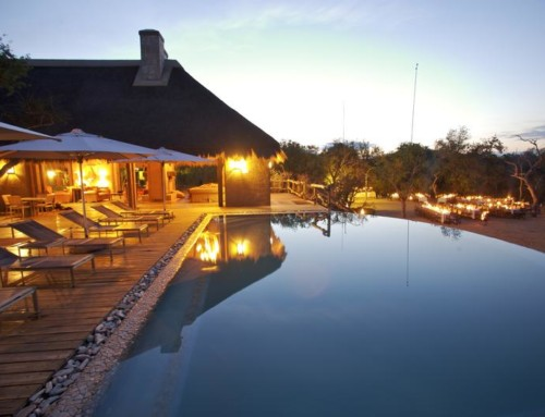 Kapama River Lodge – Standard suite