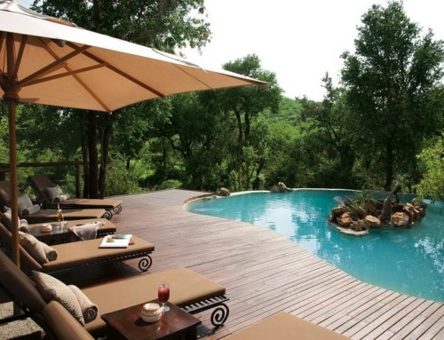 Impodimo Game Lodge – Luxury Suite