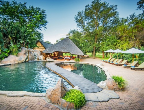 Shiduli Private Game Lodge – Greater Kruger